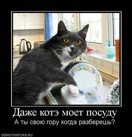 http://fotkiprosto.ru/wp-content/uploads/2013/02/Kak-myt-posudu.jpg